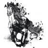 Kůň - nespoutaný sen (dámské)